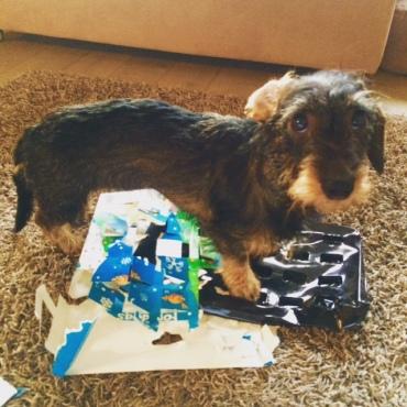 Joulukalenterin kierrätys virikekäyttöön